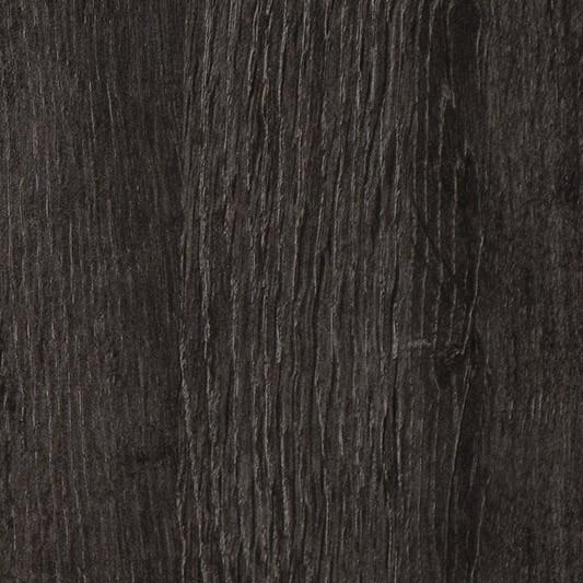 dub černý