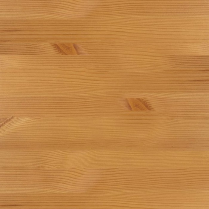 borovice bernstein