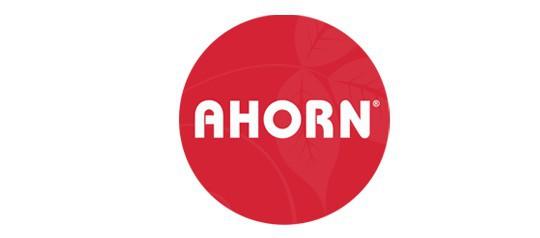 Postele Ahorn