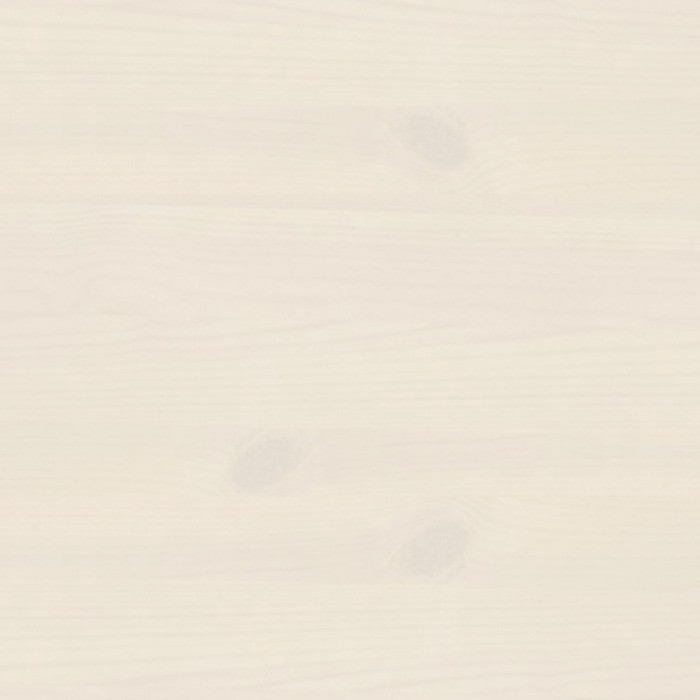 borovice bílá