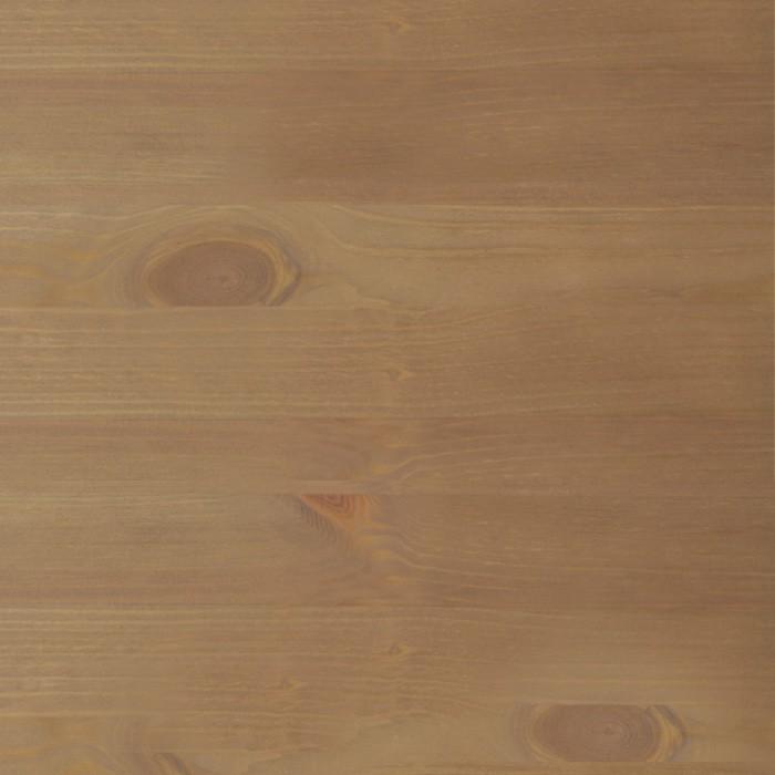 borovice cappuccino