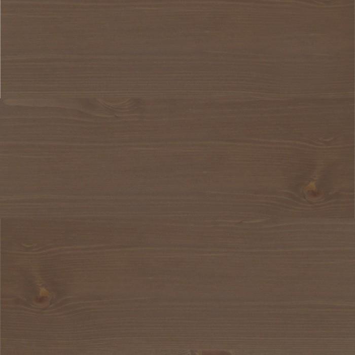 borovice chocco